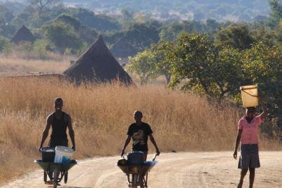 CORONA [10] – WILL ZIMBABWE COLLAPSE?